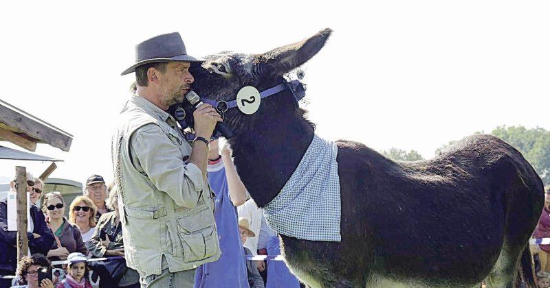 Wenn Schauspieler Gerd Meyer (die Stimme des Willi aus der ZDF-Serie Biene Maja) moderiert, spitzen sogar die Esel ihre Ohren.